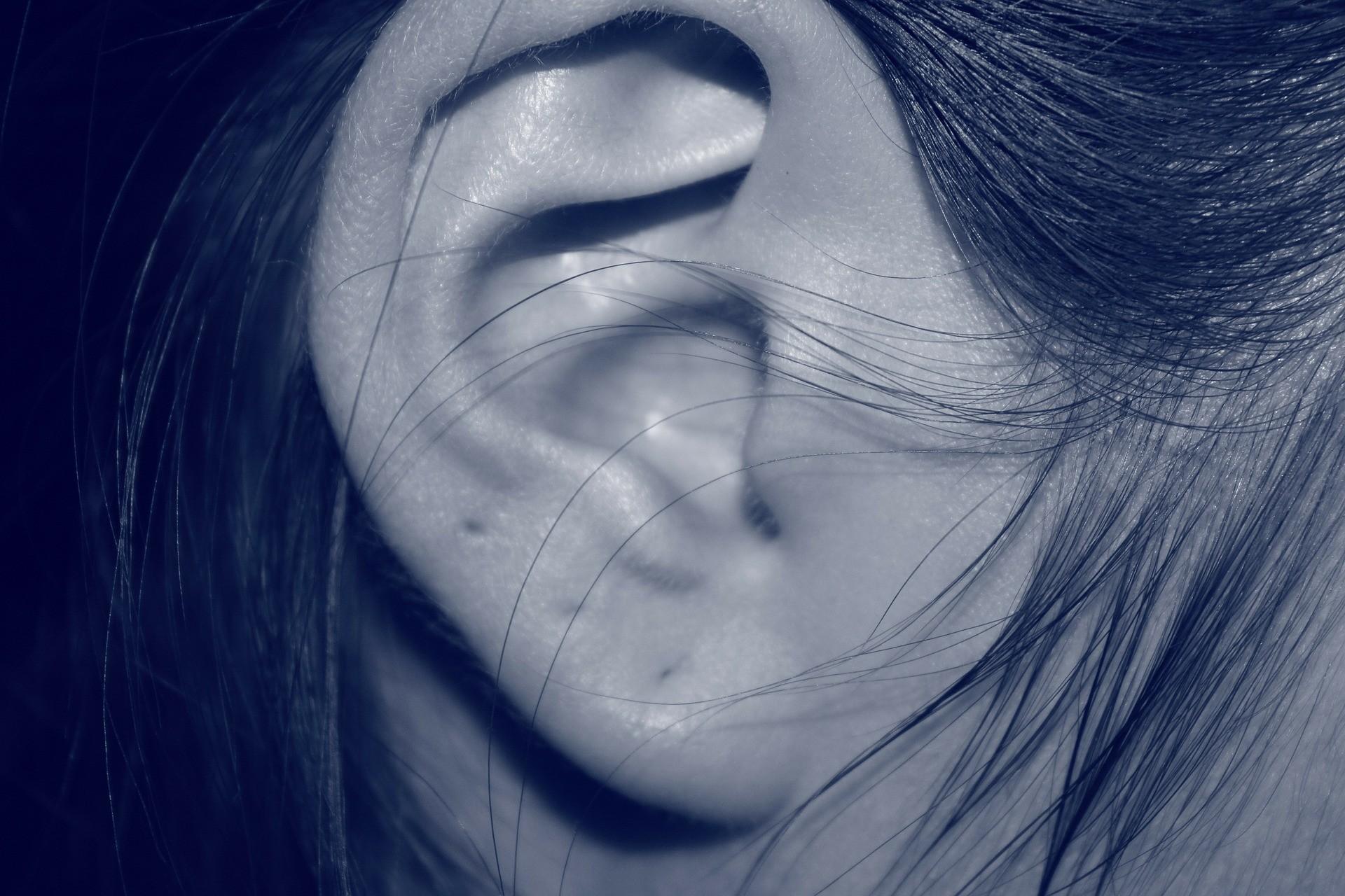 ▲耳洞,打耳洞。(圖/取自免費圖庫Pixabay)