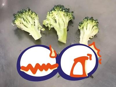 3朵花椰菜!菜蟲多到能排一句話
