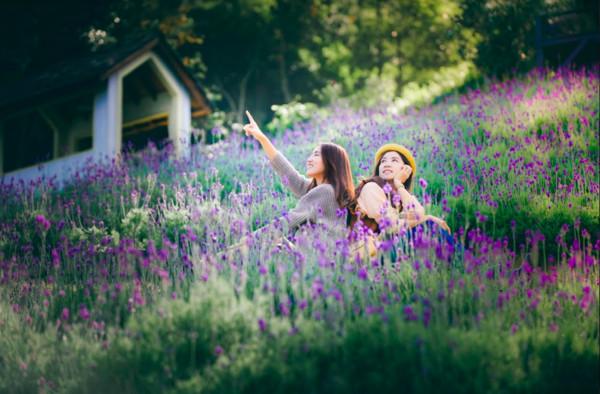 紫色花海圍繞旋轉木馬、純白敲鐘2座薰衣草森林進入最美花期| ETtoday旅遊雲| ETtoday新聞雲