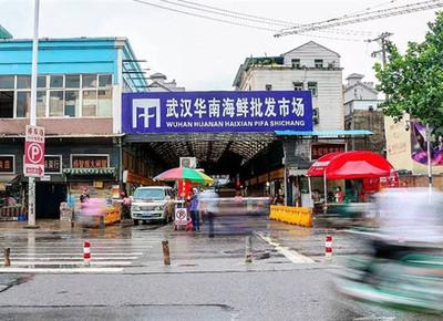 武漢肺炎 越南峴港機場發現2起疑似病例