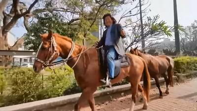 超狂! 嘉義男騎馬去投票好吸睛