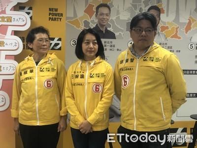 第三勢力小黨崛起 台灣國民甚幸