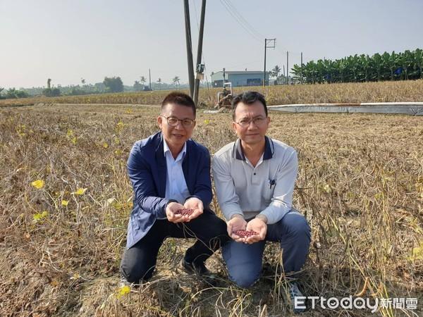 農藥商之子竟鼓勵農民少用農藥 萬豆「老鷹紅豆」打響名氣