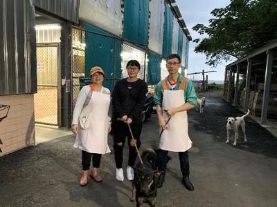 港夫妻移民台灣 退休暖當動物志工