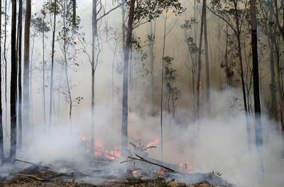 澳洲下雨了!消防擔心引發新災難
