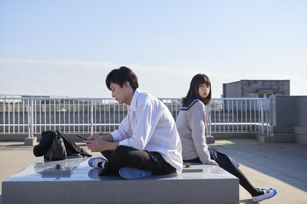 ▲▼電影《殺不了的他和死不了的她》劇照,間宮祥太朗、櫻井日奈子主演。(圖/威視提供)
