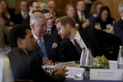 查爾斯王子金援哈利 為期一年