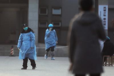 武漢300台人「回不了家」喊話政府包機