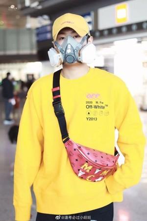 男偶像對抗武漢肺炎「戴這款口罩」搭機! 網看照片諷刺「博眼球」反遭圍剿