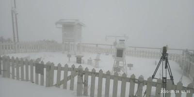 玉山-5.3度雪花飄 積雪10公分變銀白世界