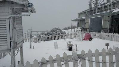 玉山-3.2度雪花飄 積雪14公分變銀白世界