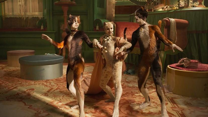 《貓》Cats - 若說藝術是要打開人的感知,那麼...