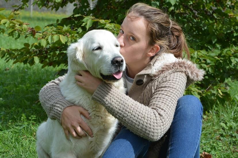 狗狗並不聰明?研究:牠們只是被愛沖昏頭 每次都無可救藥愛上人類