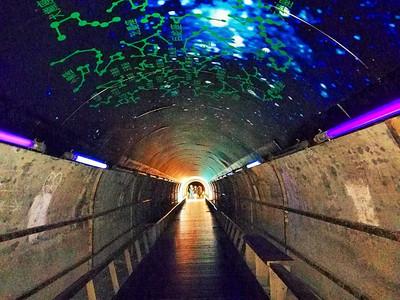 高雄超神秘星空隧道穿過就能眺望大海