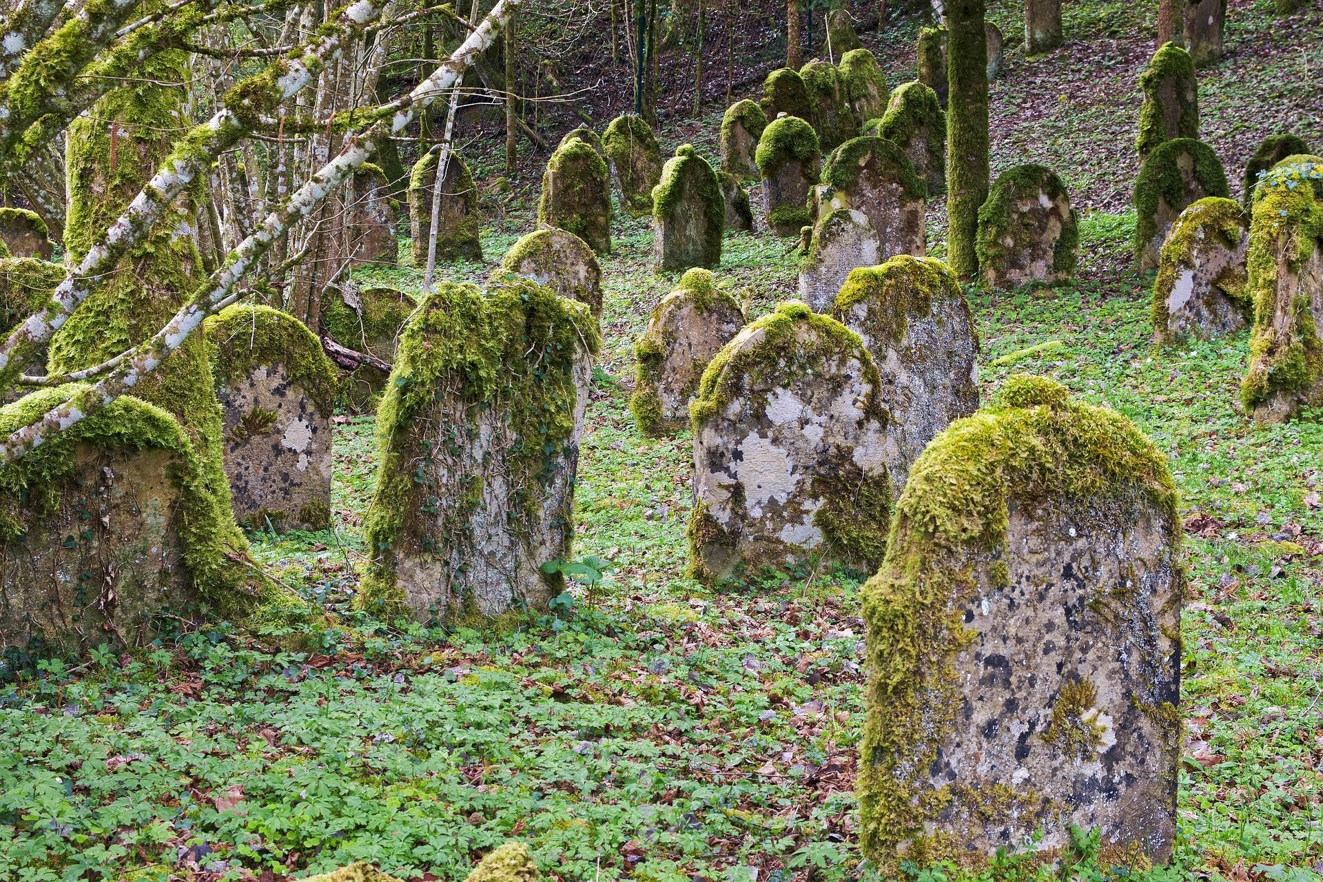 ▲墳墓,公墓,墓園,墓碑,棺材。(圖/取自免費圖庫Pixabay)