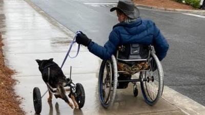「那隻沒人要的」他一看就決定領養!身障主牽殘疾狗兜風,鄰居淚喊:加油