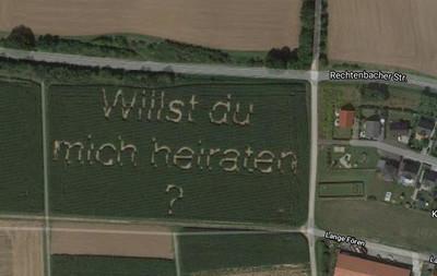 男種玉米求婚 Google地圖完整紀錄