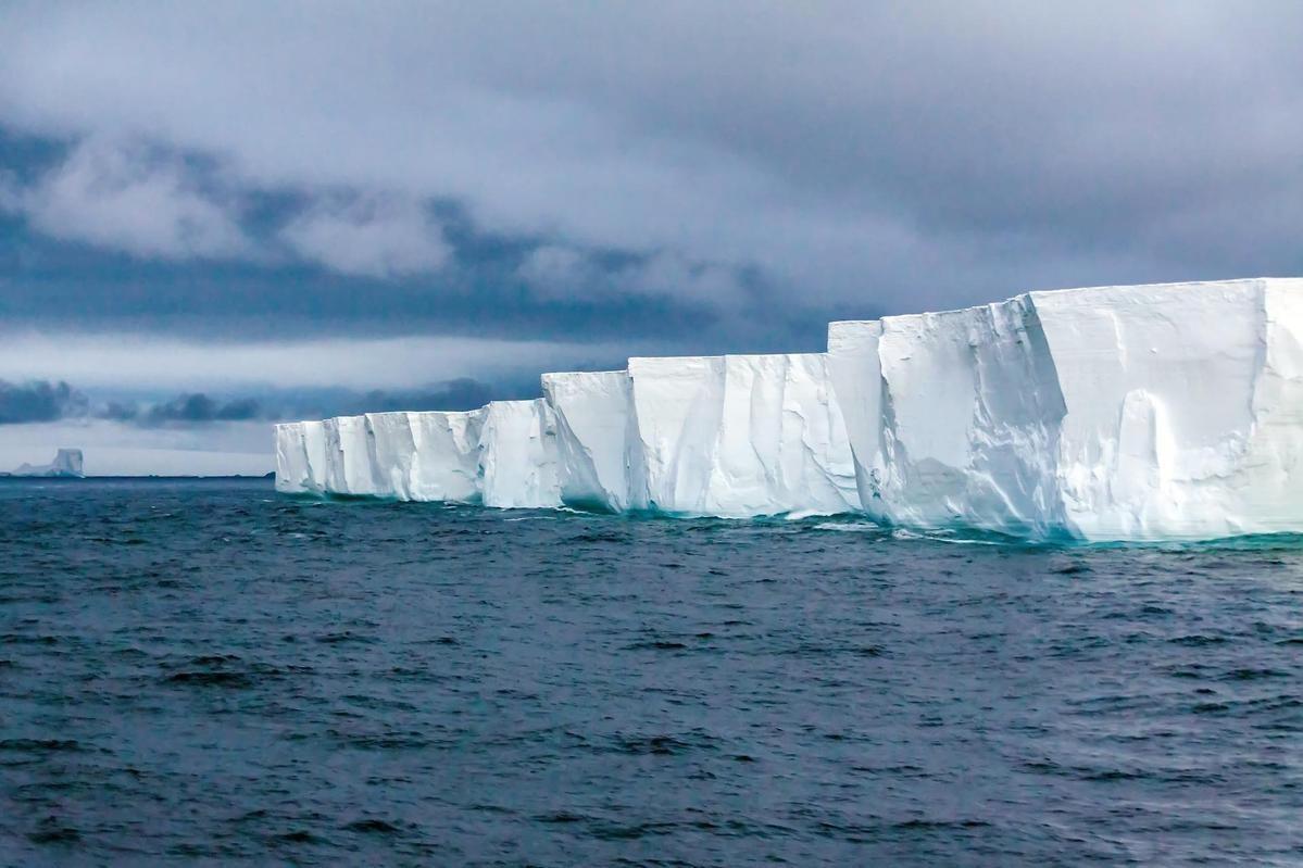企鵝數量狂減50% 南極史上最熱「台北還比較冷」 科學家:非常不正常
