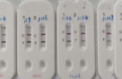 新冠病毒最新試驗盒15分鐘知有無