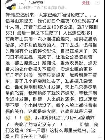地表兩大吃貨對決!蝗蟲「主治肺結核」 陸網樂翻:新冠肺炎有救了?