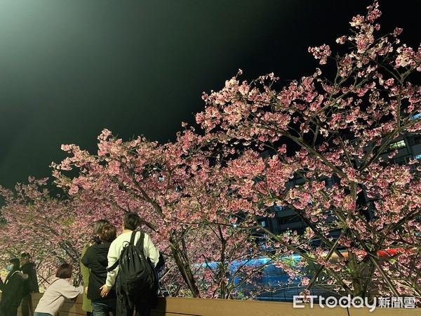 「樂活夜櫻季」確定取消!提前1小時熄燈、實體改線上直播 | ETtoda