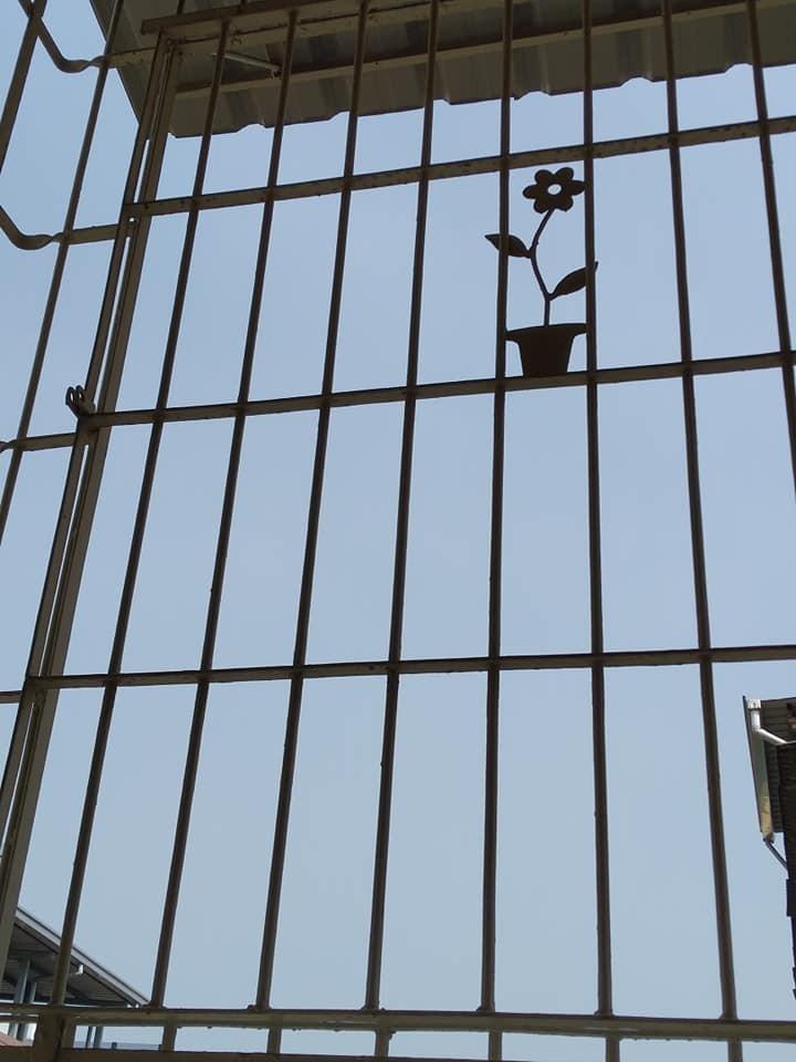 家家戶戶裝鐵窗 你沒裝鄰居還為你擔心!