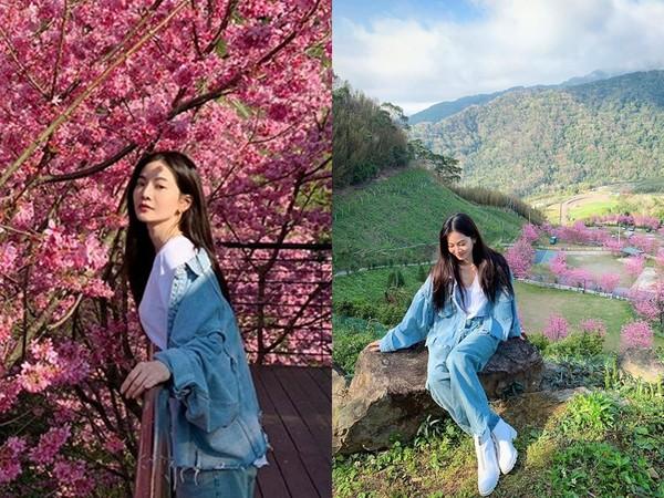 ▲▼曾之喬回娘家看到櫻花盛開,拍美照被老公亂入。(圖/翻攝自臉書/曾之喬)
