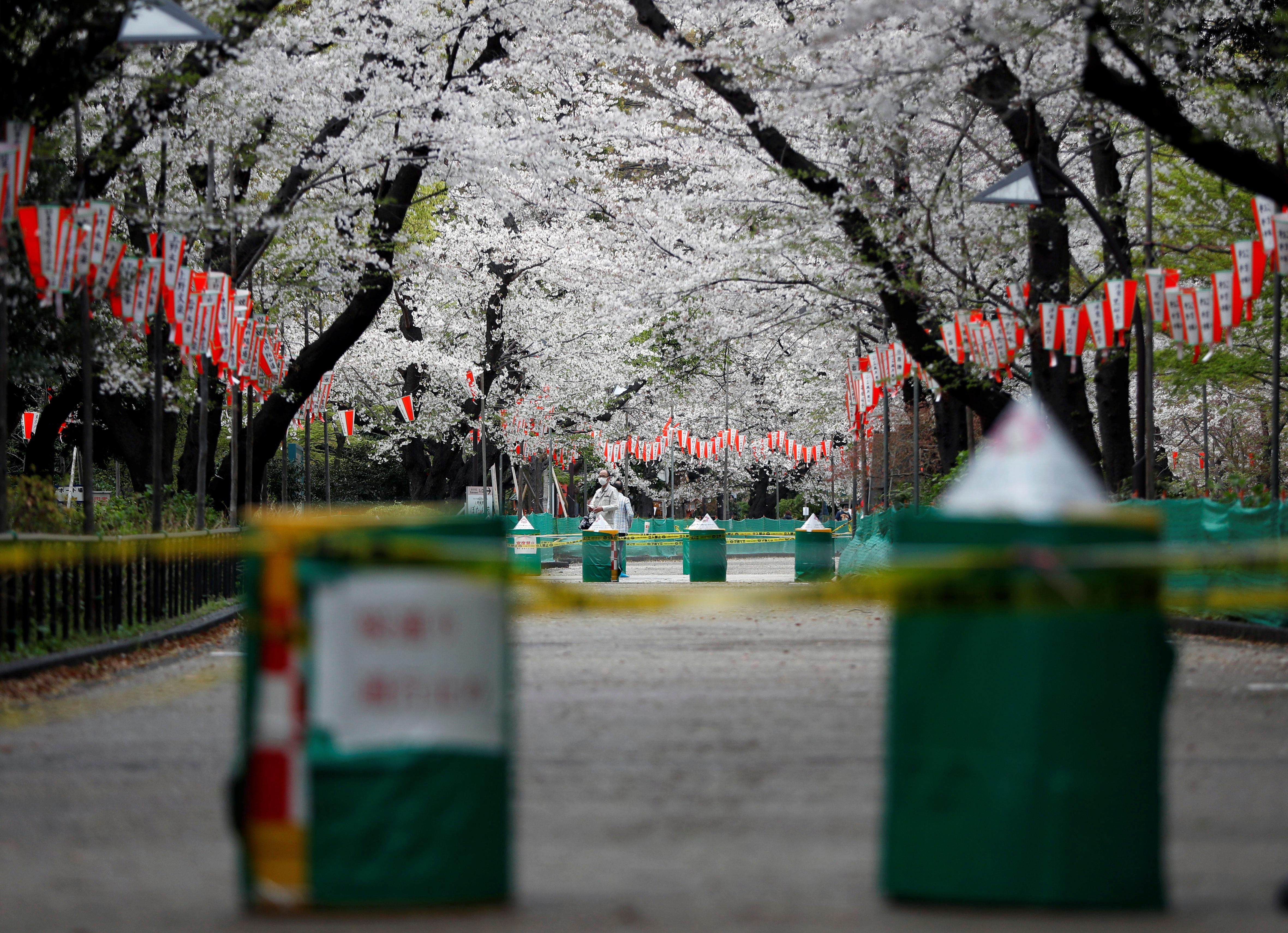 美國,日本,東京奧運,觀光,日本經濟,景氣,緊急事態宣言,集體自衛權,台海,兩岸關係,中國,拜登,菅義偉