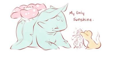 你是我的太陽,神奇寶貝也有感人故事