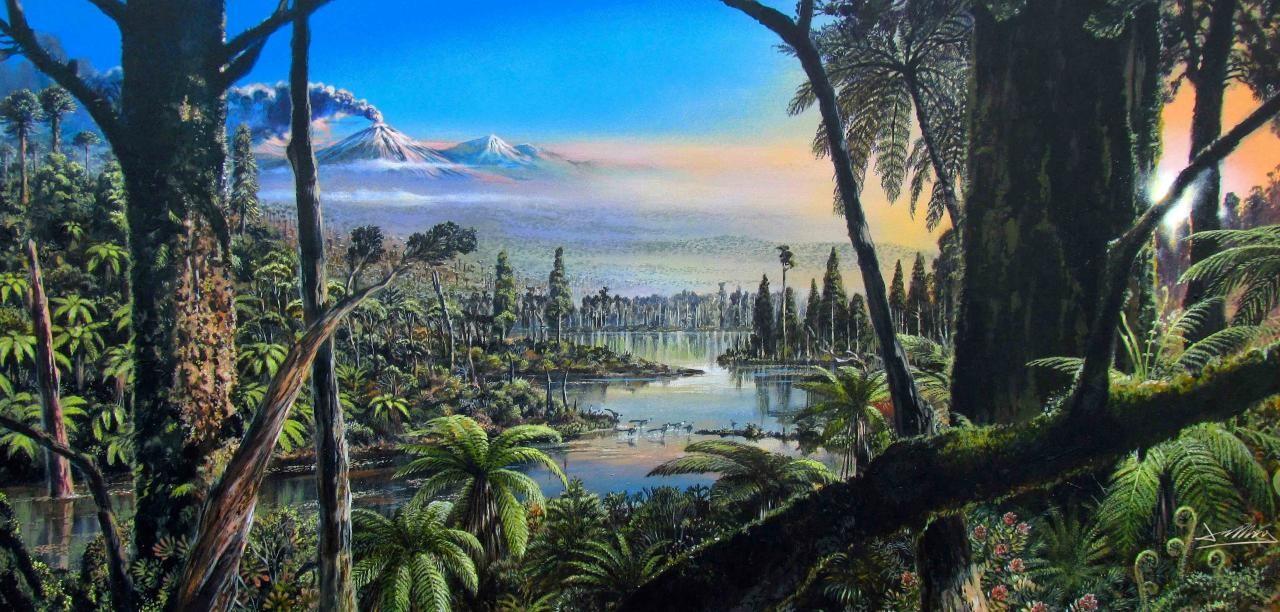 ▲▼南極以前是雨林。(圖/取自阿爾弗雷德·韋格納研究所)