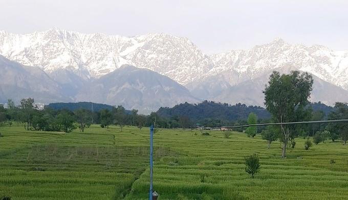 ▲從印度所看到的喜馬拉雅山。(圖/翻攝自Twitter/帳號名稱gull_1985)