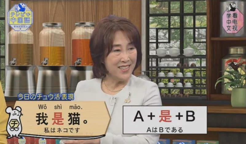 大檸檬用圖(圖/翻攝自《看電視學中文(テレビで中国語)》)