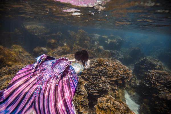 ▲▼祈錦鈅化身美人魚詮釋水下攝影。(圖/固力狗娛樂提供)