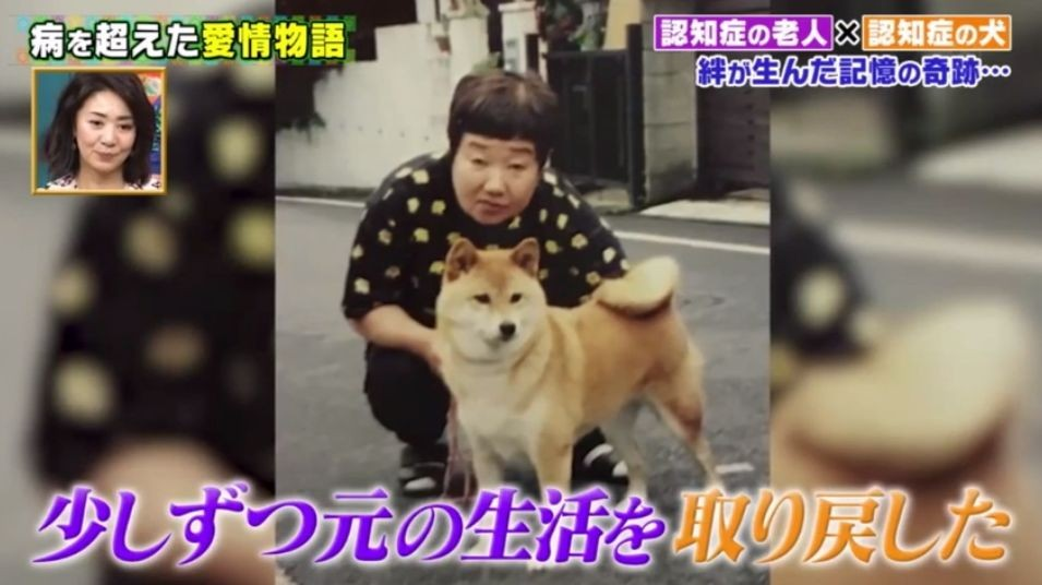 大檸檬用圖(圖/翻攝自日本節目《坂上的動物王國》)
