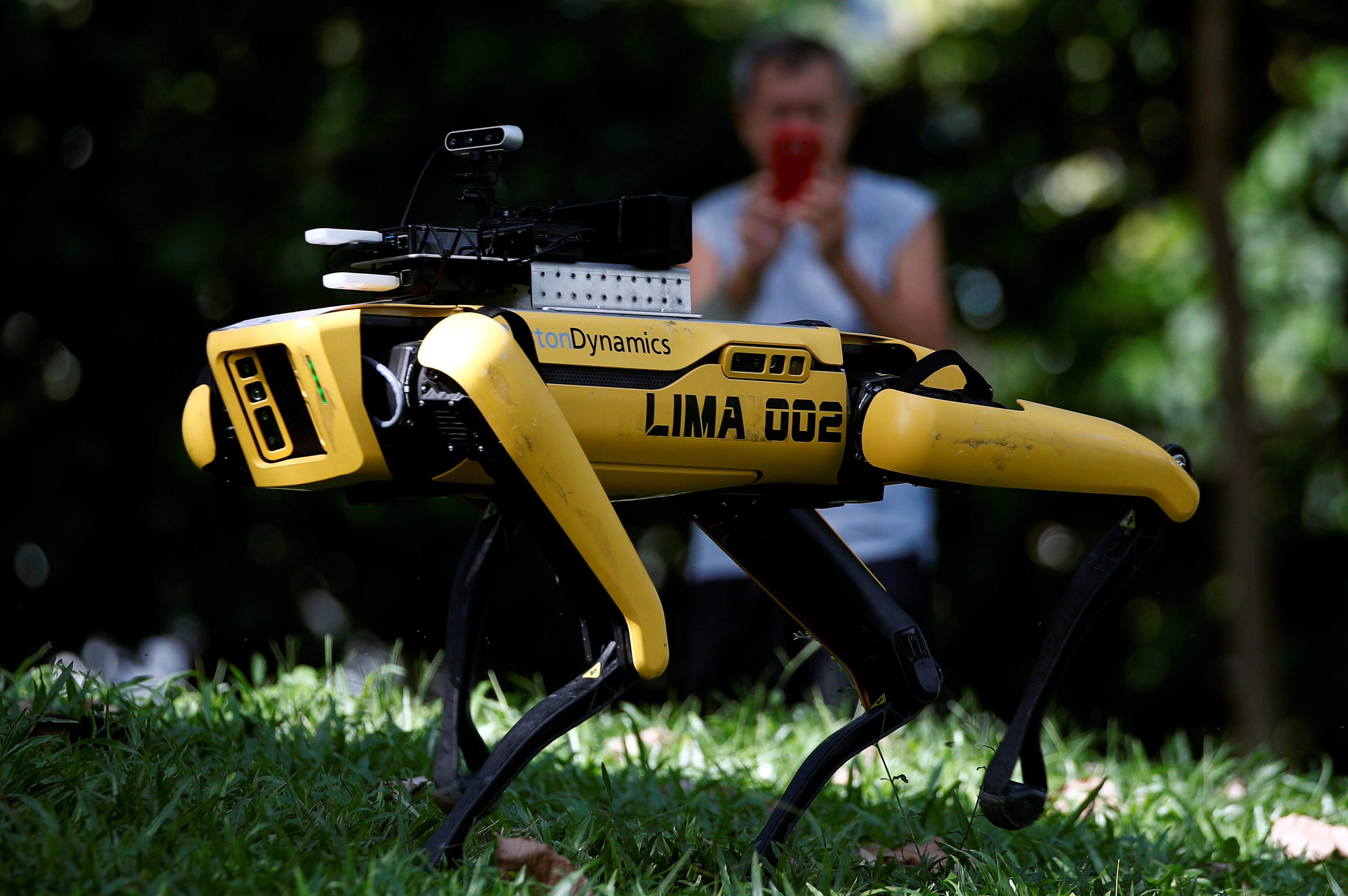 ▲▼新加坡政府引進會說話機器狗防疫。(圖/路透)