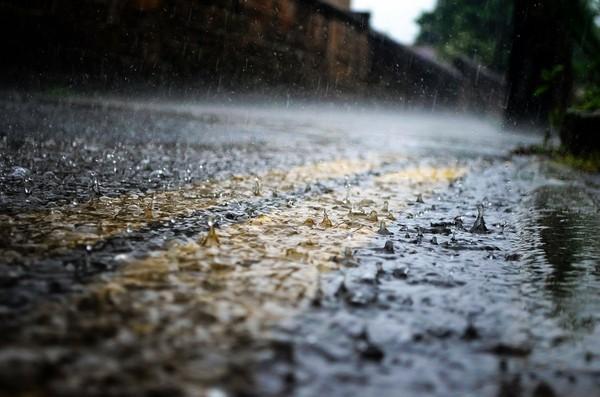 下雨天恐爆菌?醫曝研究…土壤「符合3條件」氣溶膠最多:小雨更可怕