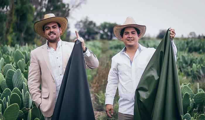 ▲▼墨西哥企業家開發環保「仙人掌材質」。(圖/翻攝自desserto.com)