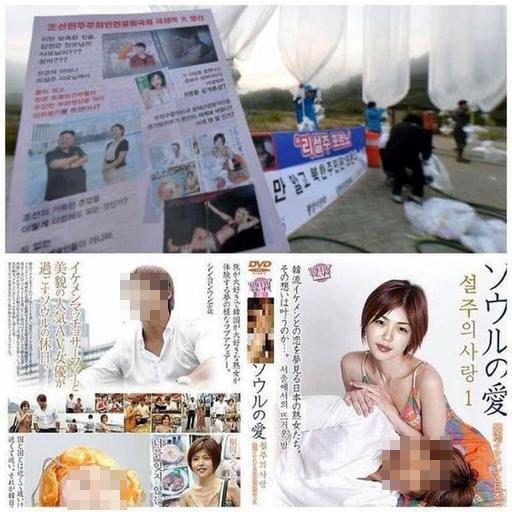 ▲▼北韓第一夫人李雪主頭相遭合成至日本成人影片封面,盧武鉉部分則已上馬賽克(圖/翻攝韓網)