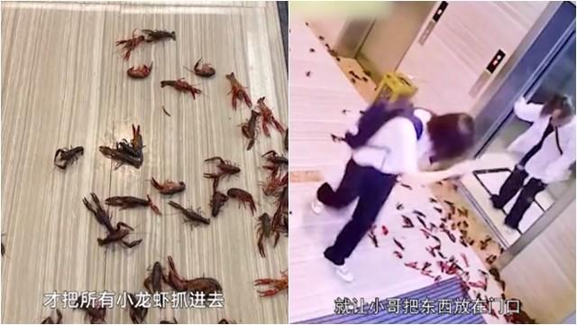 大檸檬用圖(圖/翻攝自FV視頻)