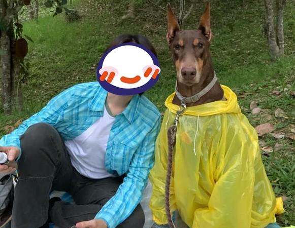 帶35KG杜賓犬野餐! 高級帥臉被誤認「裝置藝術」笑翻媽