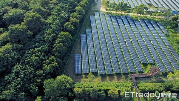 樹電共生!奇美10億打造全台最美「綠能園區」 太陽能發電量達2000萬度