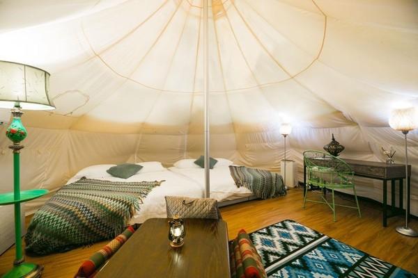 帶行李就能入住!特搜宜蘭夢幻豪華露營地 睡在星空下還有絕美落羽松大道