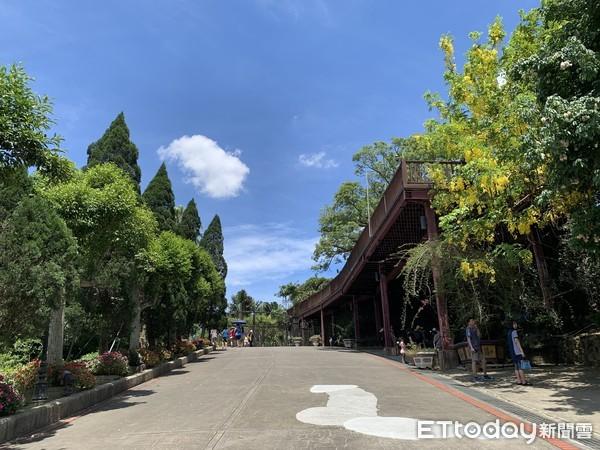 7000坪日式庭園免費看!唯美落羽松林、紫藤花…勾勒「夢想中的莊園」