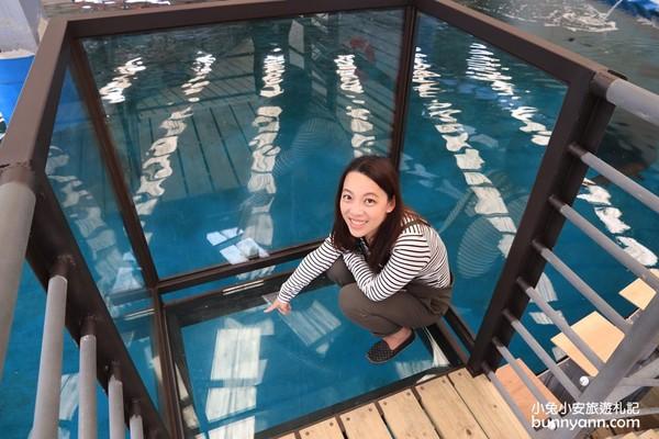 鯊魚餵食體驗!金車生技水產養殖中心 「透明觀景台」近距離賞鯊、魟