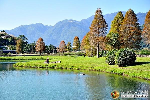 忘憂湖畔+翠綠平原!宜蘭落羽松秘境 遼闊山景免費隨你拍