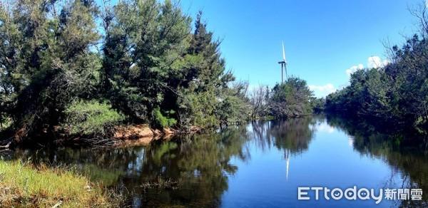 萡子寮濕地植栽復育營造 南投林區管理處結合社區縫合海岸林 | ETtod