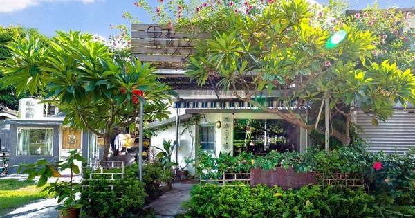 Google找不到的秘境!高雄絕美老屋咖啡 「隱藏小庭院」超浪漫 | E