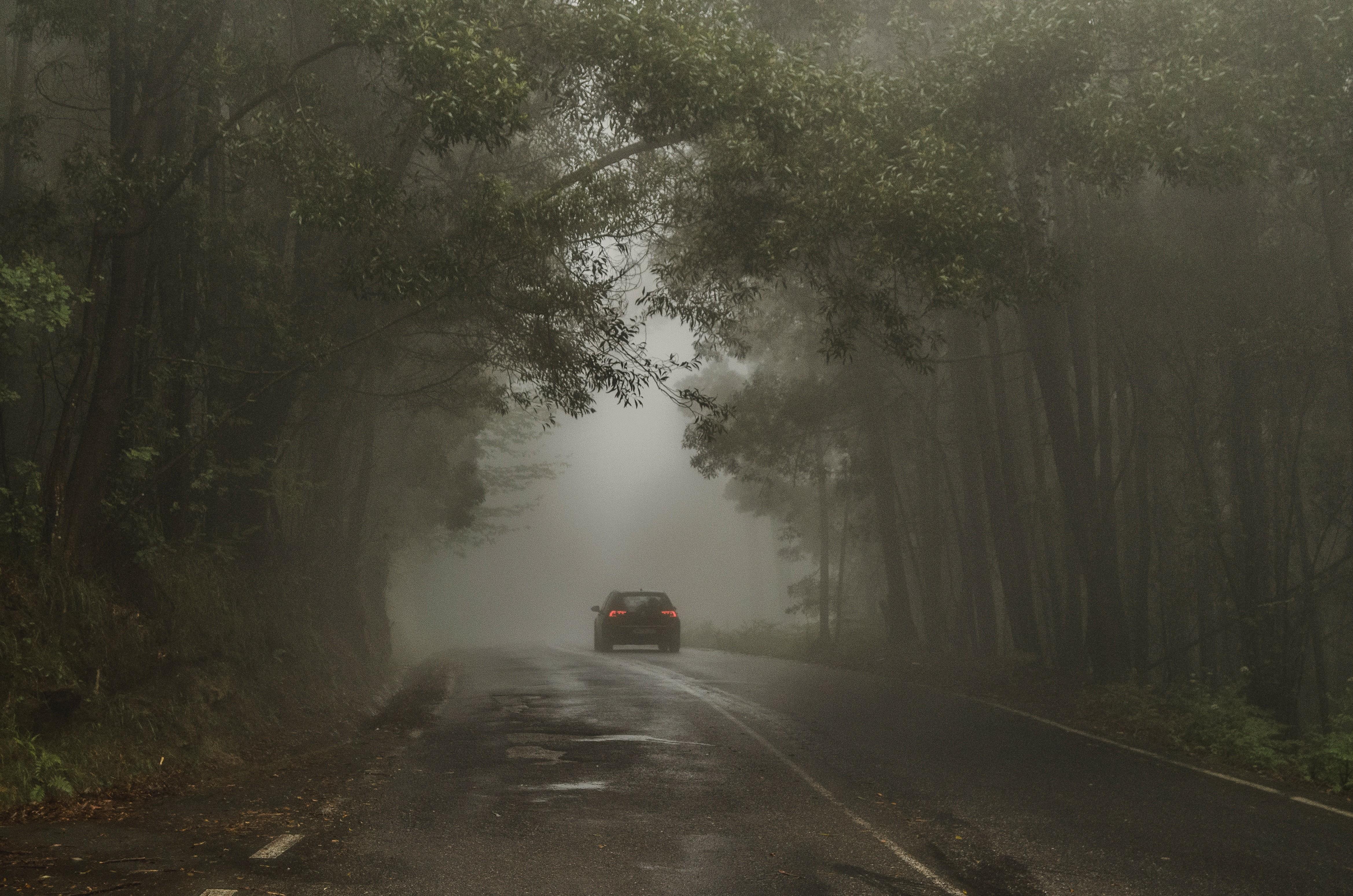 西濱,快速道路,連環車禍,車禍,道路安全,林佳龍,交通部,公路總局,霧霾,濃霧,車距