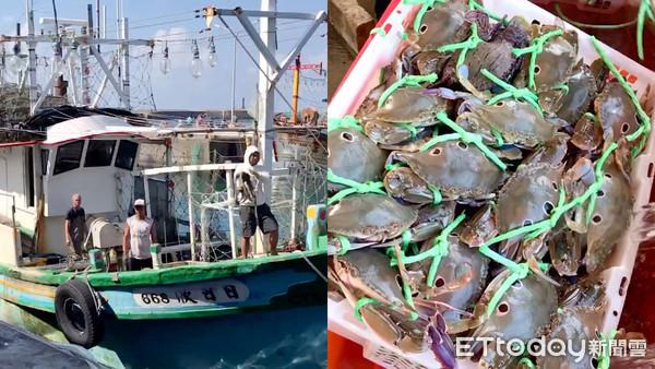 人龍搶鮮!野柳假日活蟹市集福袋開戰 超值399...買2斤萬里活蟹 |