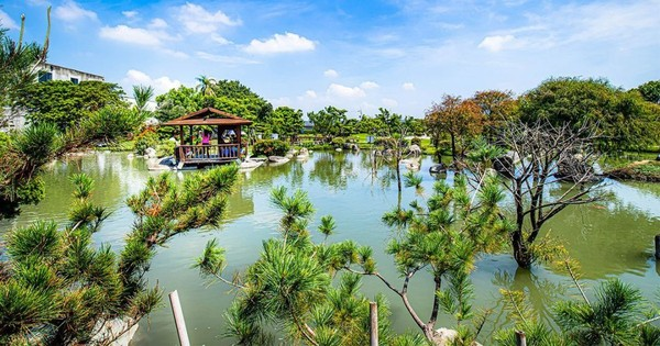 入園免門票!全台最大日式庭園在雲林 必拍水中教堂、落羽松木棧道